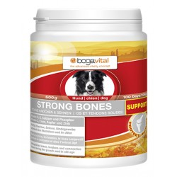 Strong bones support
