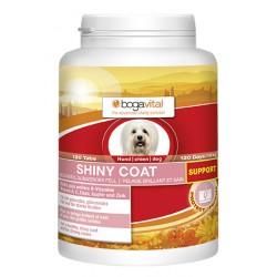 Shiny coat support