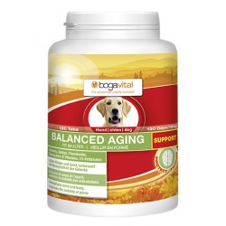 Balance aging support