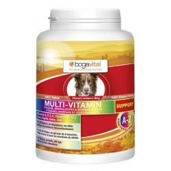 Multi vitamin support