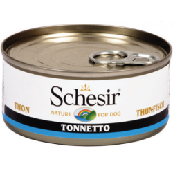 Schesir thon